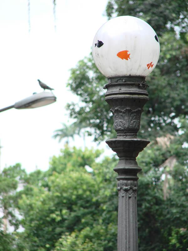 Aquários Suspensos em praça do Rio de Janeiro (Poro)