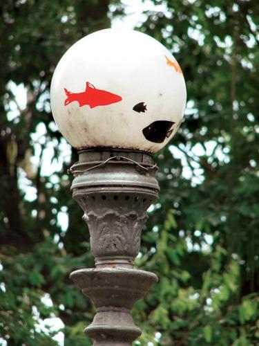 Aquários suspensos, Intervenção Urbana do Grupo Poro realizada no Rio de Janeiro em 2007)