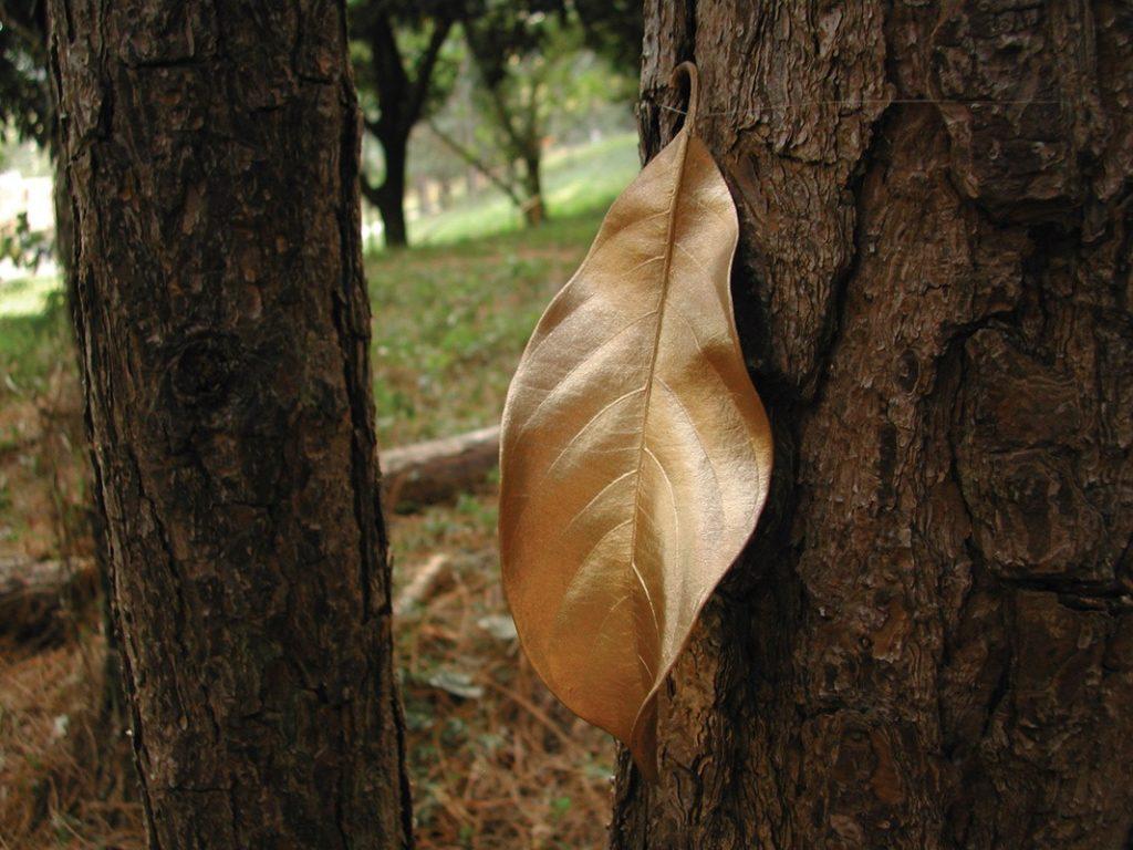Intervenção Folhas de Ouro do Coletivo Poro